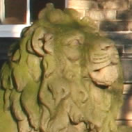 A lion on Victoria Road
